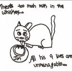 jim-cat